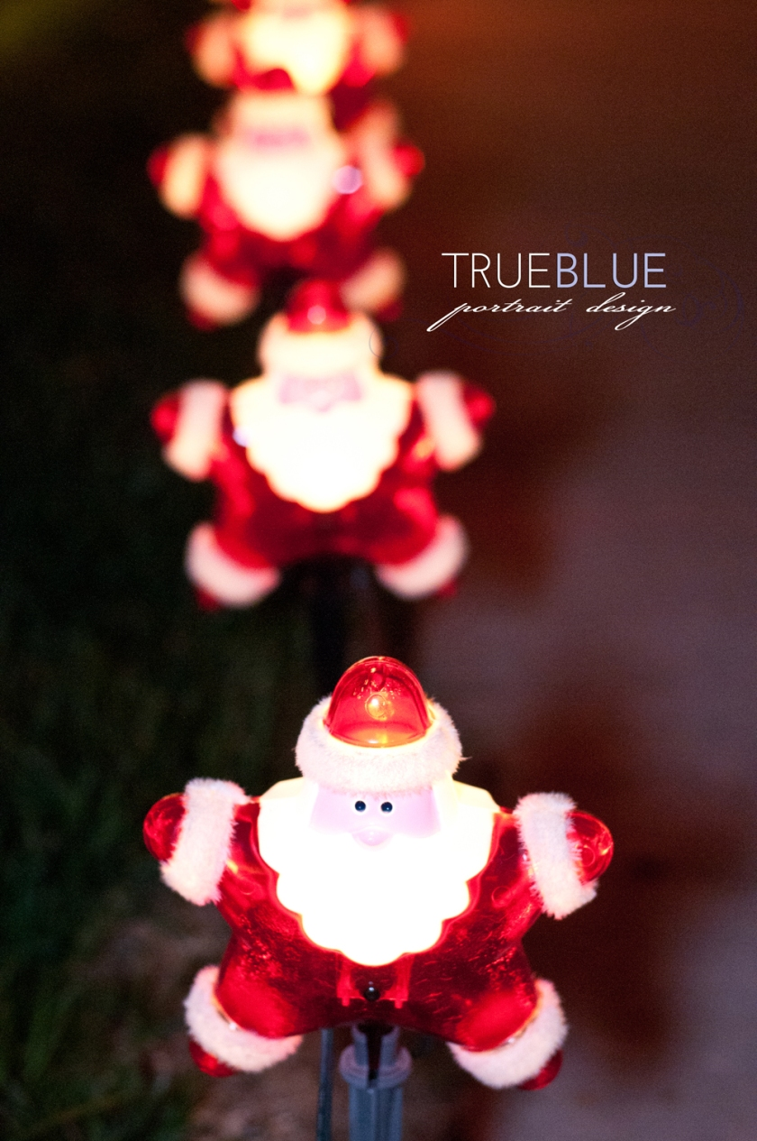 Child and Family Photography ~ TRUE BLUE Portrait